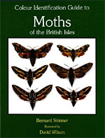 The Colour Identification Guide to Moths of the British Isles