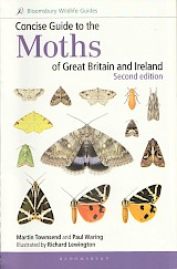 Concise Guide to the Moths of Great Britain and Ireland - cover